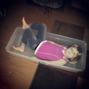 my child boxed herself. because why not.